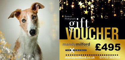 PET-Gift-Voucher-Ad Front